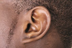 Source:  Shutterstock.com via The Pharmaceutical Journal Aminoglycoside antibiotics are known to be associated with hearing loss because they can damage the ear's sensory cells, but it has not been clear who is at greatest risk