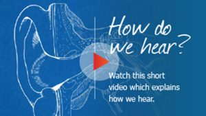How do we hear - video overly