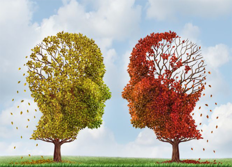 dementia and hearing loss symbolised by trees
